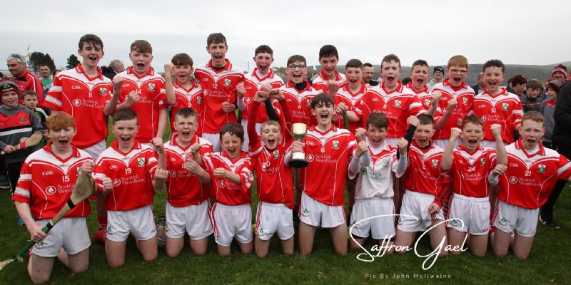 Congrats to the u14 boys NA feile Champions (Pic from The Saffron Gael)