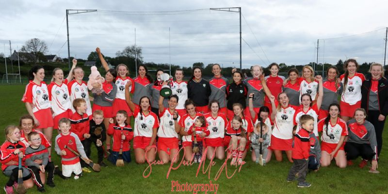 Senior Camogie Champions for the 6th year in a row (Pic from The Saffron Gael)